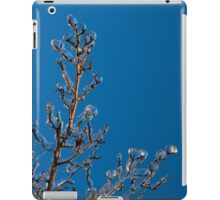 Mother Nature Christmas Decorations - Gleaming Icy Baubles in Blue iPad Case/Skin