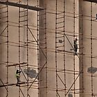 Building the scaffold by awefaul