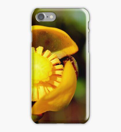 Bullhead Lily iPhone Case/Skin