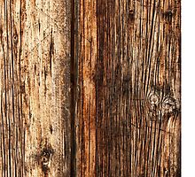 Wood texture by Antonio Gravante