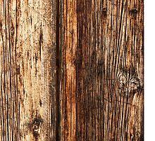 Wood texture by Antonio Gravante