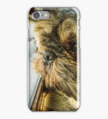 Thoughtful Puppy iPhone Case/Skin