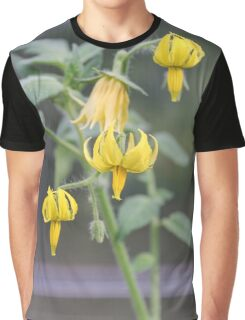 Yellow flowers of tomatoes. Graphic T-Shirt