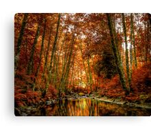 Reflect On Me Canvas Print