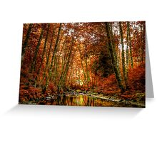 Reflect On Me Greeting Card