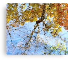 Reflecting On Monet Canvas Print