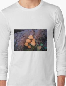 Autumn Mushrooms Long Sleeve T-Shirt