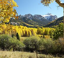 Cimarron Gold by Eric Glaser