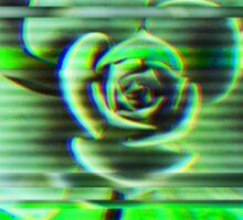 VHS Succulent Sticker