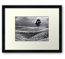 Field of Saddle Road Dreams 2 Framed Print