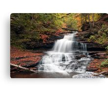It Feels Like Fall At Onondaga Falls Canvas Print