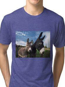 Donkeys 2 Tri-blend T-Shirt