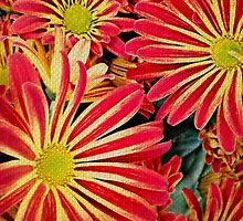 Garden Tapestry by Scott Mitchell