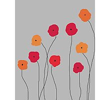 Red and Orange Poppies Photographic Print