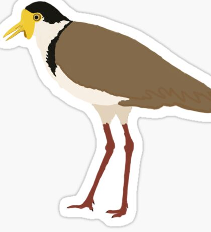 Masked Lapwing Sticker