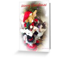 tifaany merry christmas Greeting Card