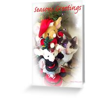 Tiffany Seasons Greetings Greeting Card