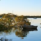 Where the Dinghys Wait! 'Tin Can Bay', Queensland.  by Rita Blom