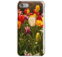 Floral Rainbow iPhone Case/Skin