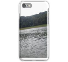 Water with green beauty iPhone Case/Skin