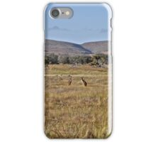 Kangaroos on the plains iPhone Case/Skin