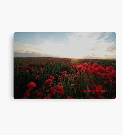 Remember the Fallen Canvas Print