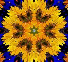 Sunflowers by Jorge H. Elias