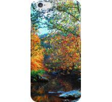WEST PRONG LITTLE PIGEON RIVER,AUTUMN iPhone Case/Skin