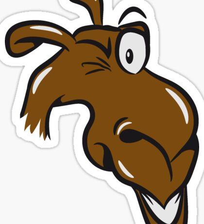 Kamel witzig  Sticker