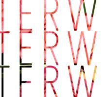 MisterWives Sticker