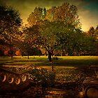 Rhyddings Park  by Irene  Burdell