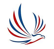 eagle-bird-abstract-logo by mydigitall