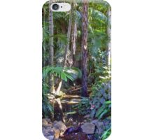 Mt Tamborine iPhone Case/Skin
