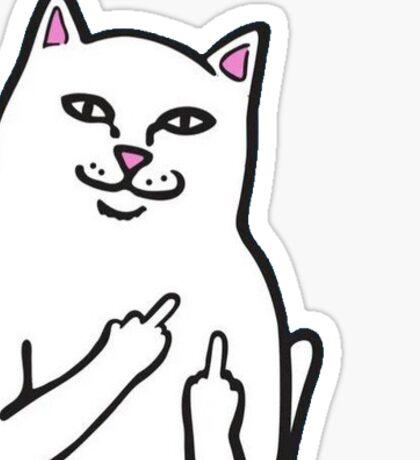 Fk You Cat Sticker