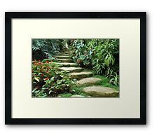 Tropical steps Framed Print