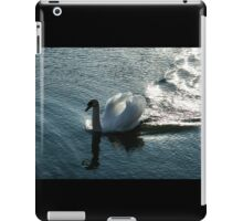 Silver Wake - the Pompous Territorial Swan iPad Case/Skin
