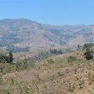 Timor Leste Highlands by Werner Padarin