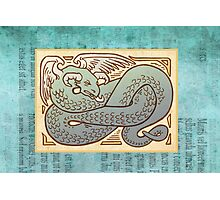 Winged Serpent Photographic Print