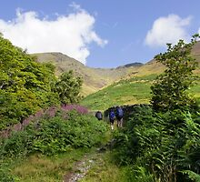 walking in the lake district - Blencathra by DARREL NEAVES