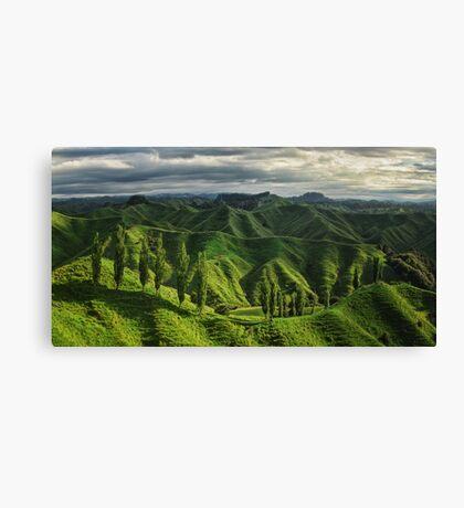 Crumpled Taranaki  Canvas Print