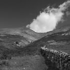 start of climb - Blencathra by DARREL NEAVES