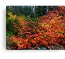 On The Other Side Of The Hill ~ Fall Colors ~ Canvas Print