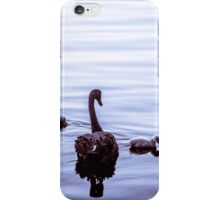 Black Swans 'n' Cygnets no.1 iPhone Case/Skin