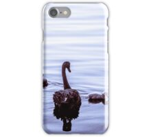 Black Swans 'n' Cygnets no.1 iPhone Case/Skin