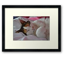 Sleeping Buffy Framed Print