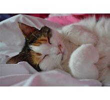 Sleeping Buffy Photographic Print