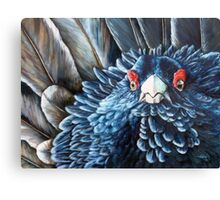 Scottish Capercaillie Original Acrylic Painting by Jane Green Canvas Print