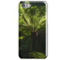 Tree Ferns iPhone Case/Skin