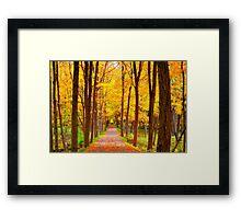 Full Flavor of Fall Framed Print