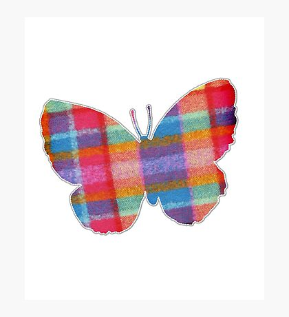 Butterfly in Check Photographic Print